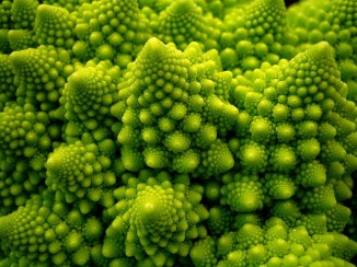 Romanesco Broccoli.
