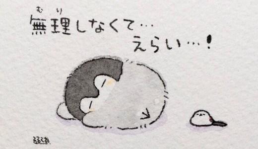 コウペンちゃんがしまむらの寝具で登場!4点セットで2000円は安い!