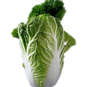chinese cabbage, salad, leaf lettuce