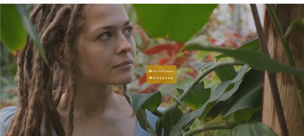 Screenshot_2020-01-30 Marvelous Marijuana - Alt Media