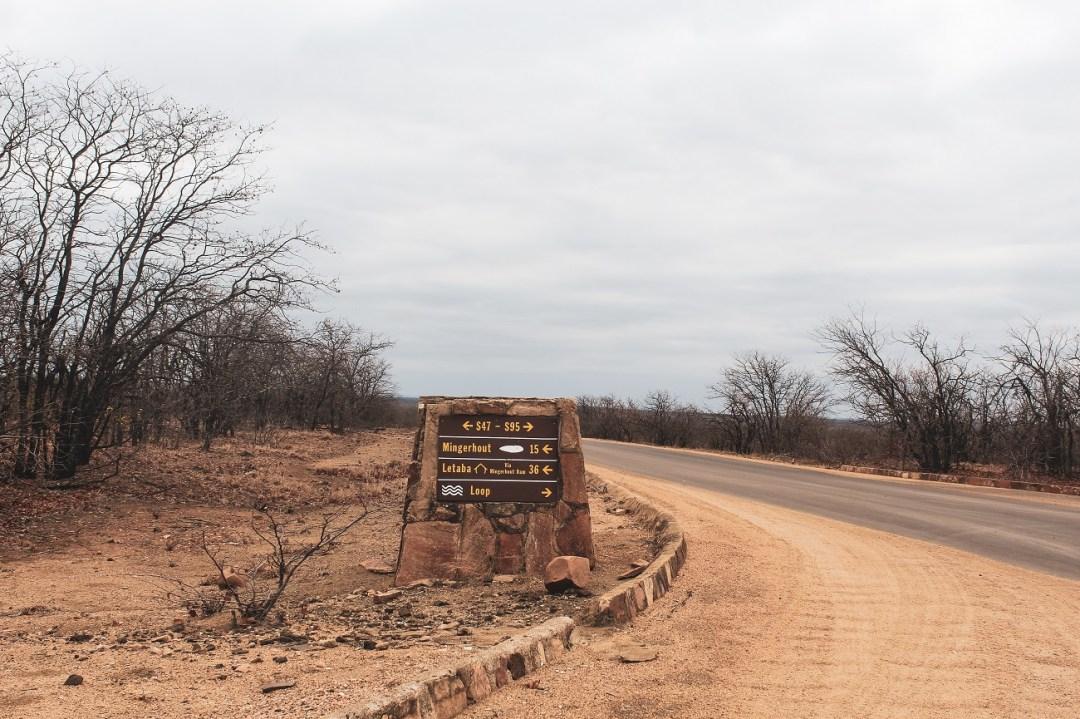 lilytoutsourire - safari au parc kruger - 3 jours dans le bush (4)