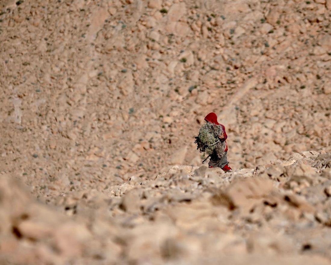 Les gorges de Todra - le Maroc en van