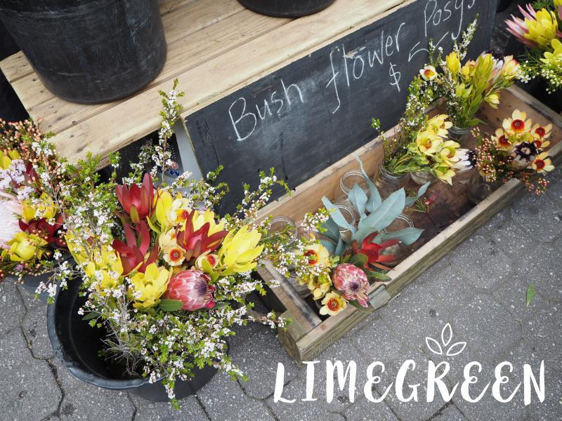 サラマンカマーケットの切り花