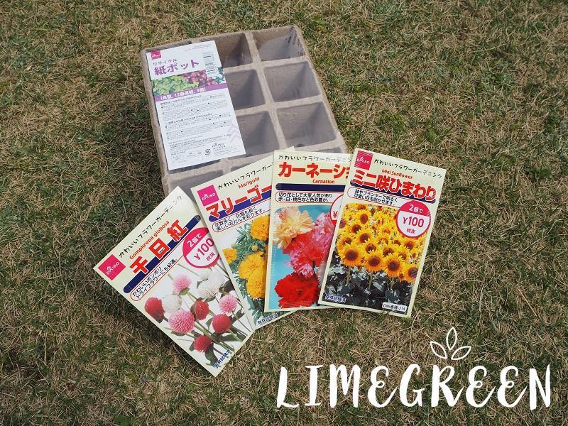 ダイソーの花の種とリサイクル紙ポット