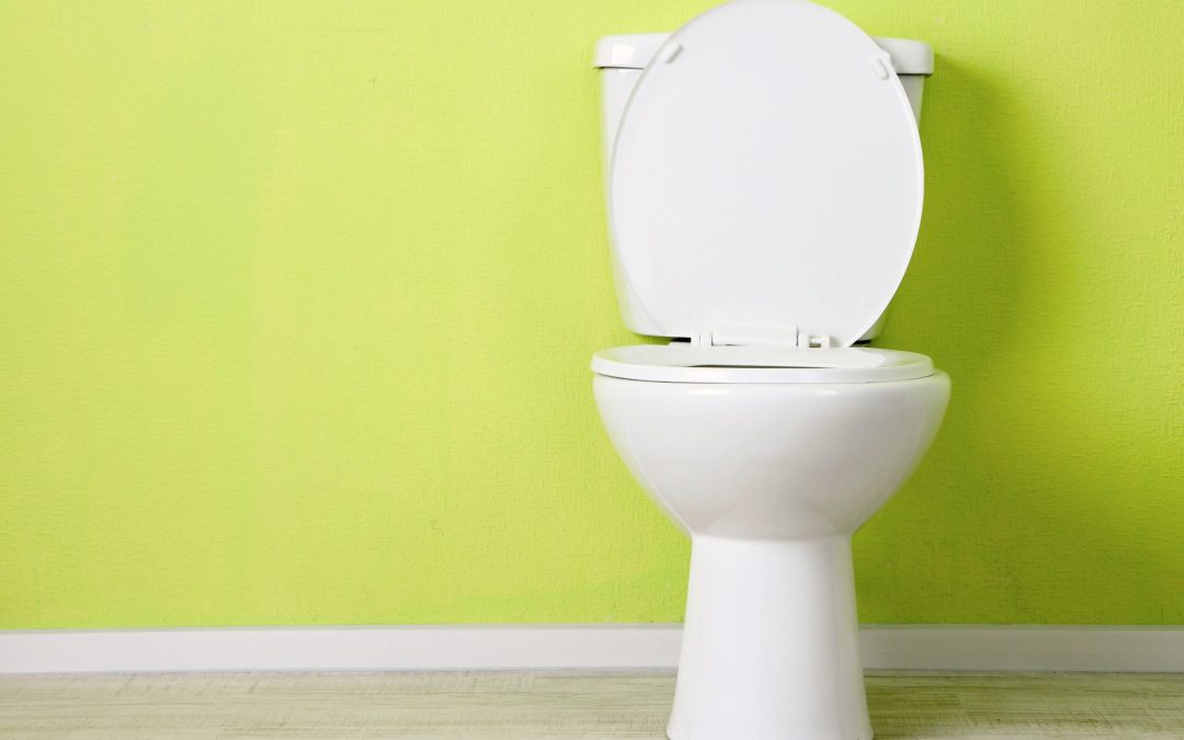 Flush me baby, one more time