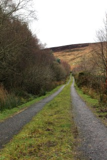 Parts of the Kerry Way are on the countryside roads.