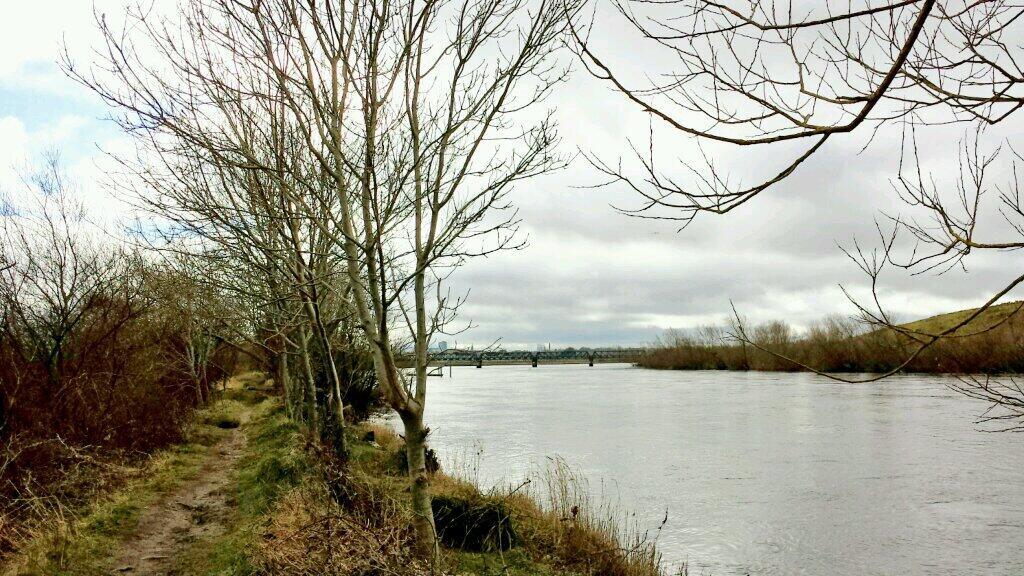 Walk Along the Shannon at Corbally – 27 Nov 2012