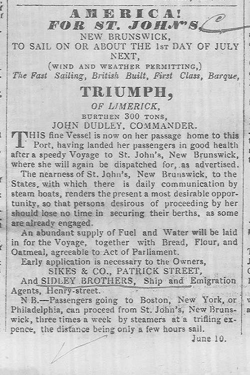 Limerick Chronicle 1848