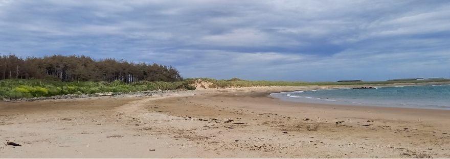 Wide empty sandy beach - New Release Christian Books - Summer Reading