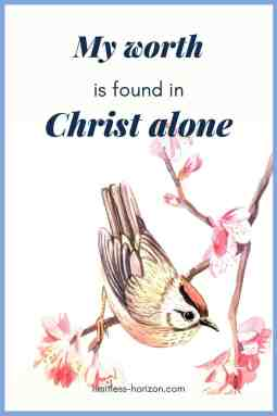 Picture of a sparrow on a branch and quote my worth is found in Christ alone.