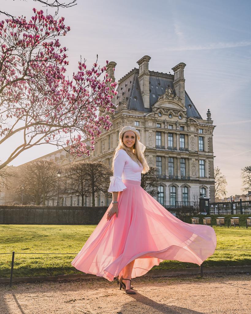 Magnolia in bloom in the Tuileries gardens