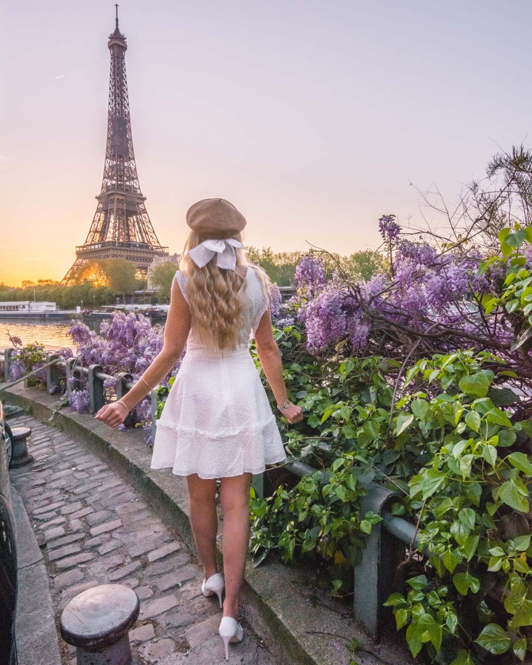 Wisteria in bloom in Port Debilly with the Eiffel Tower - Paris