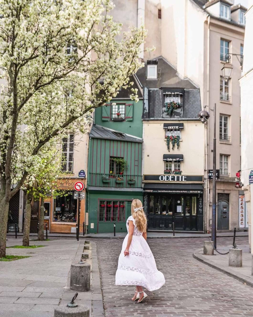 White blooms in front of Odette in rue Saint Julien le Pauvre - Paris
