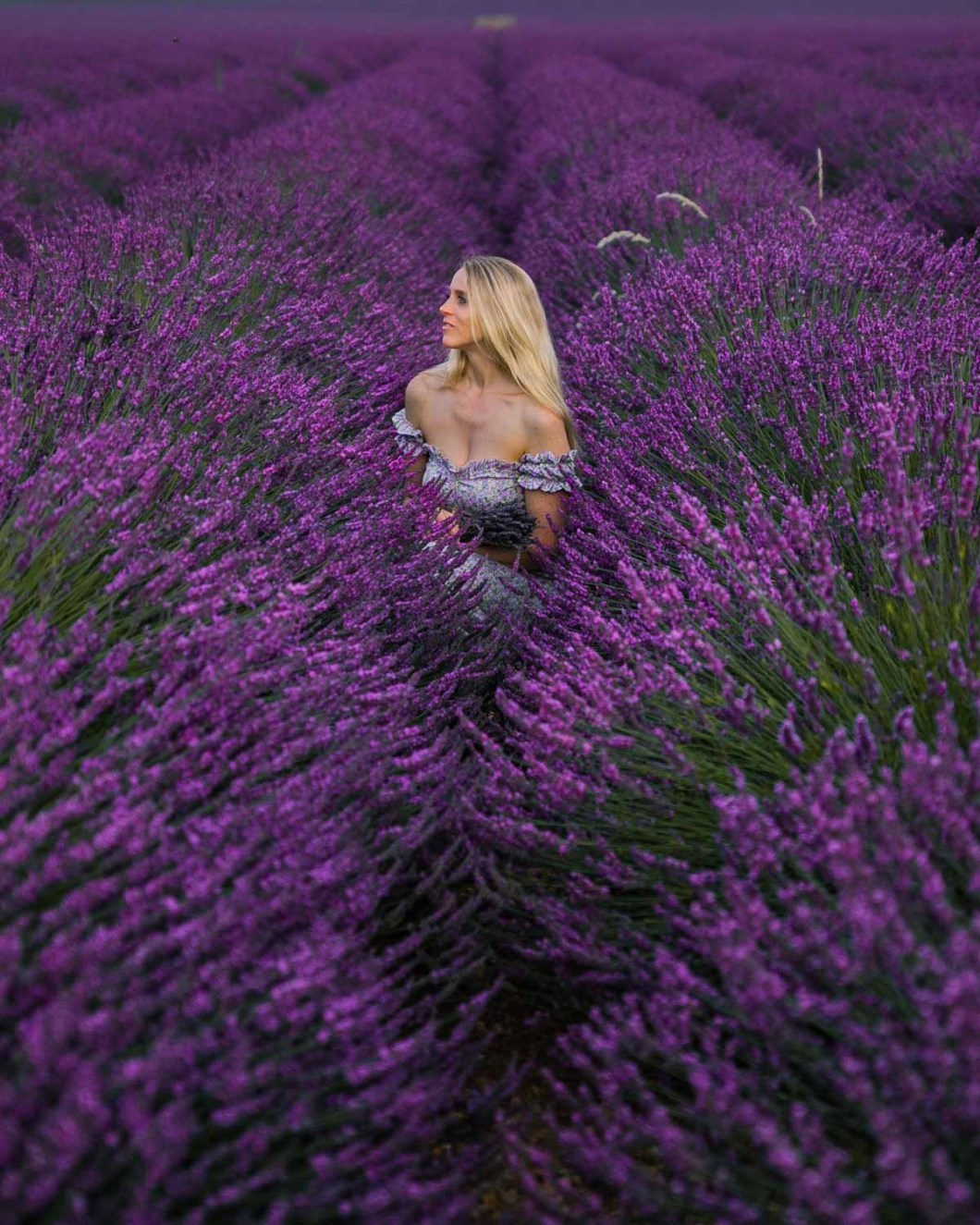 Portrait in the lavender fields in Provence