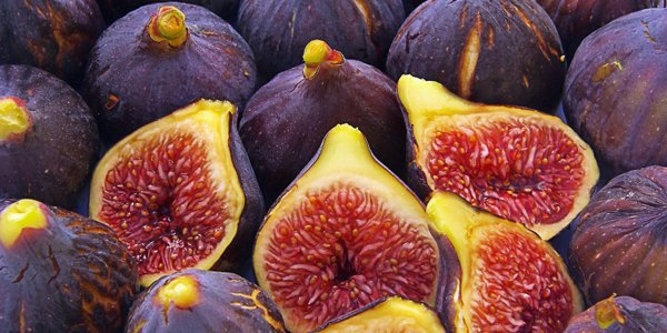 "fig - 8 ""TASTY"" FESTIVALS IN GREECE IN AUGUST AND SEPTEMBER"