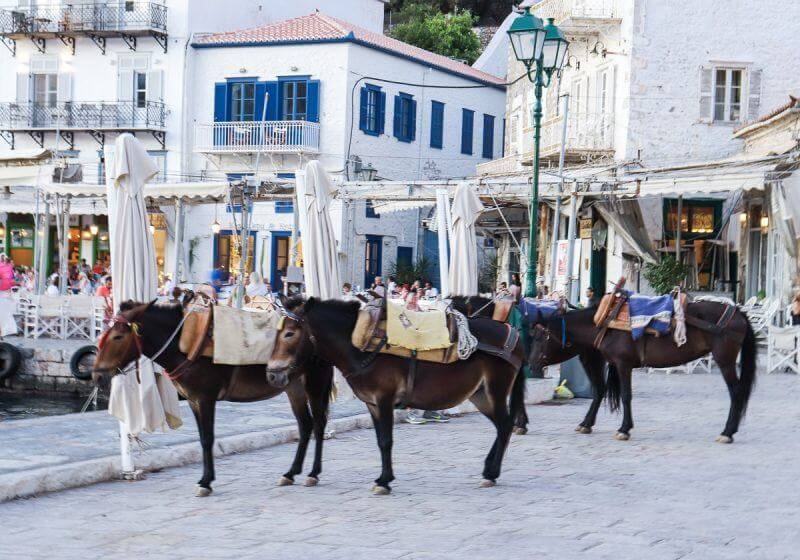 donkeys - 15 TOP THINGS TO DO IN HYDRA ISLAND GREECE