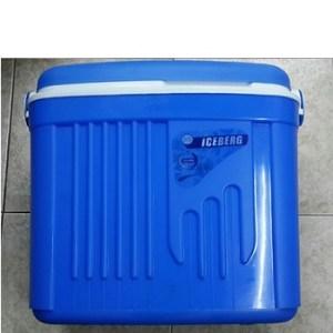 Cooler Iceberg Icebox 32 Liter