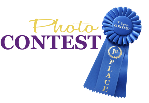 Los Angeles & Orange County Limousine Contest