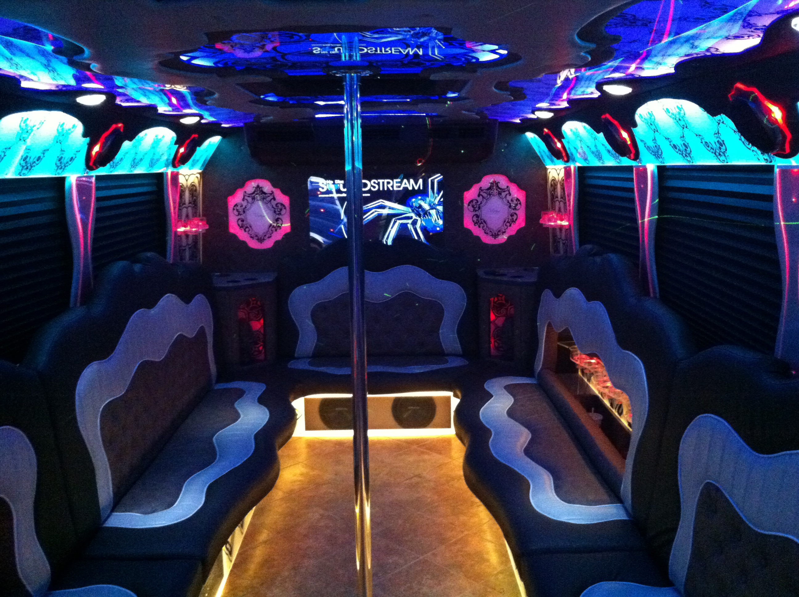 Mini Party Bus Chicago