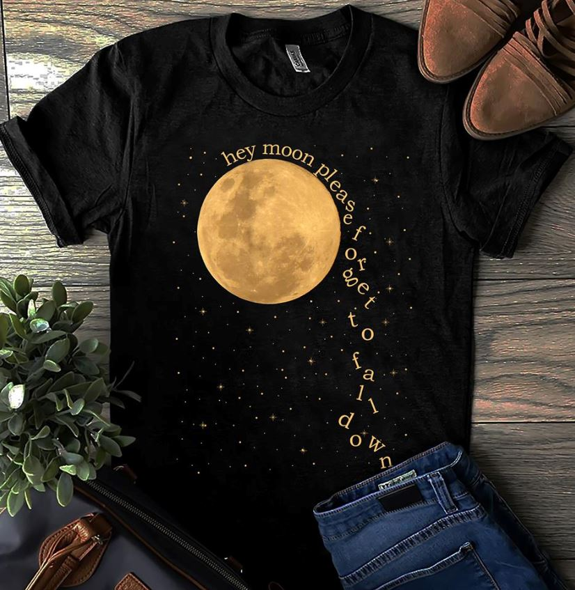Panic at the Disco hey moon please forget to fall down shirt