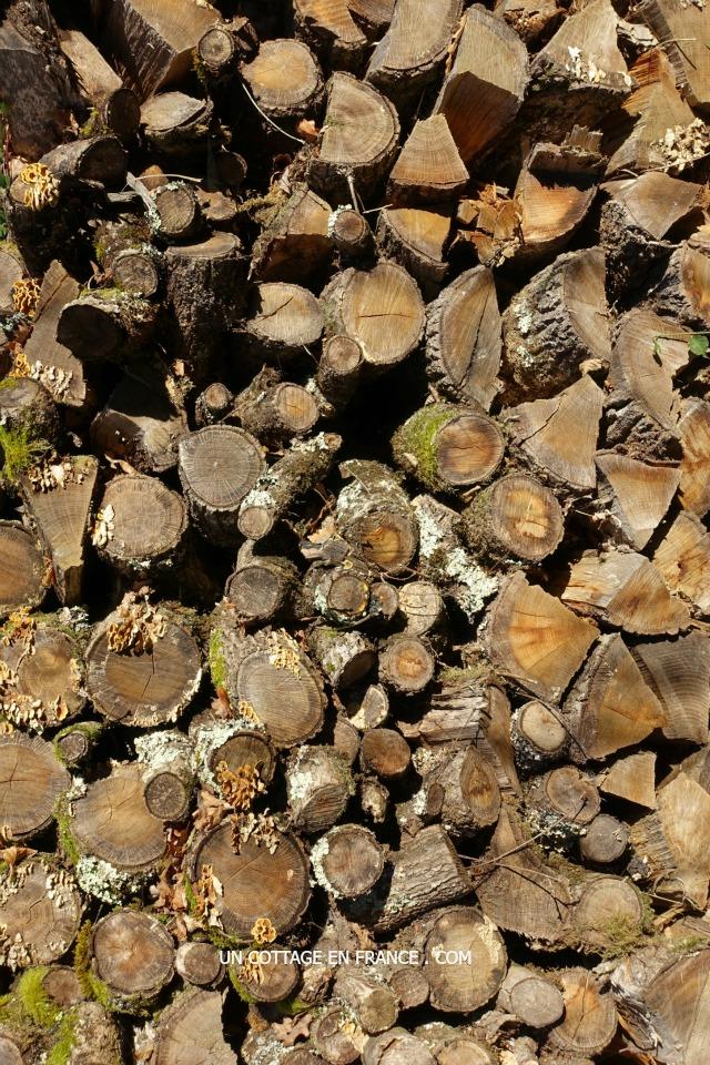 Paysage du Limousin sous le givre