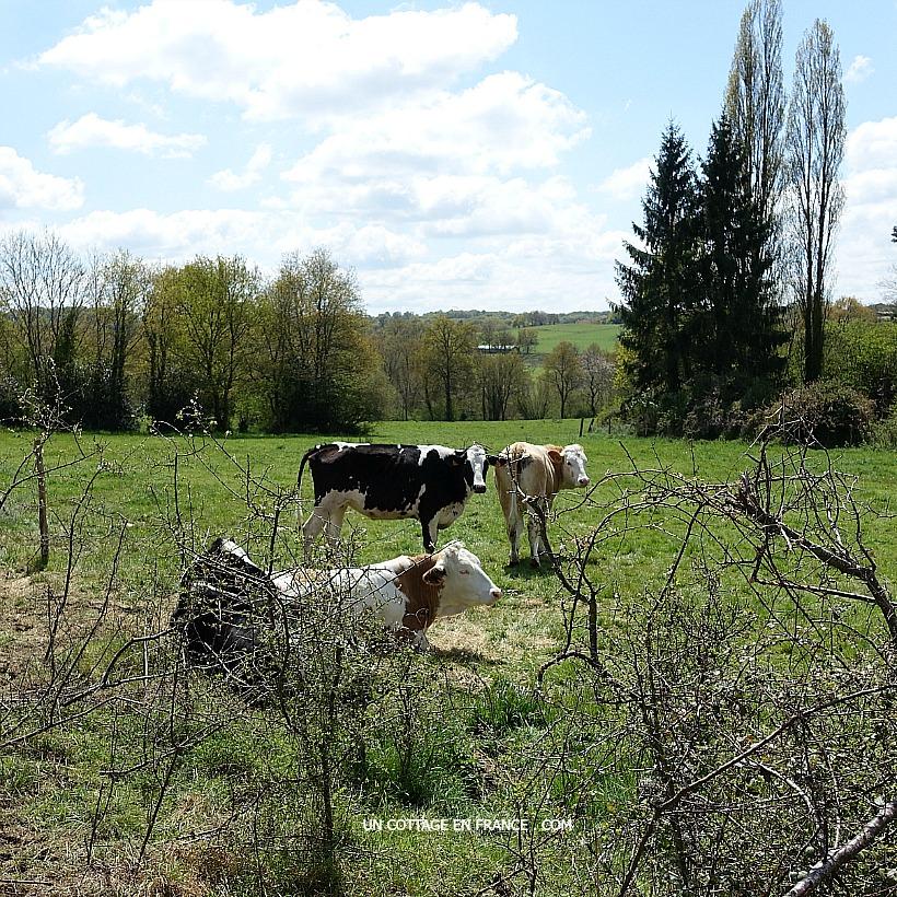 Blog Limousin Haute-Vienne