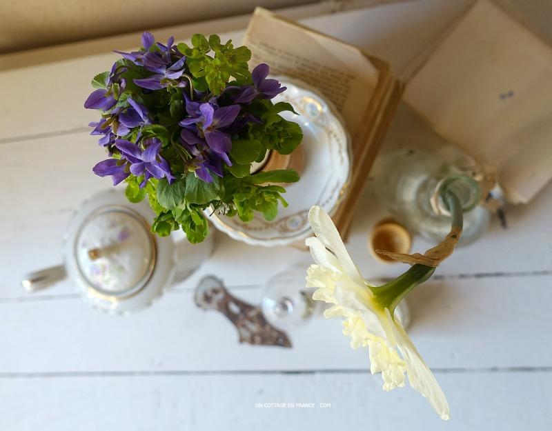 Jonquille et violettes, blog campagne décoration 8s