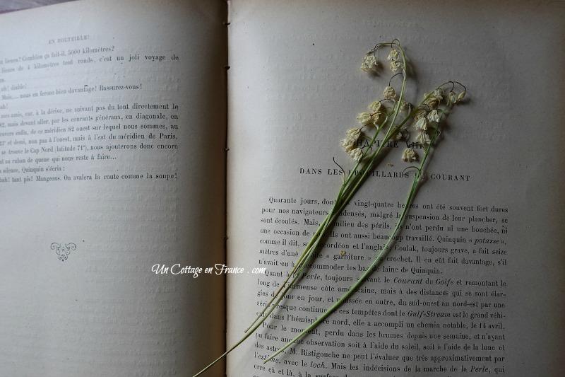 le muguet séché dans le livre, blog campagne chic 3
