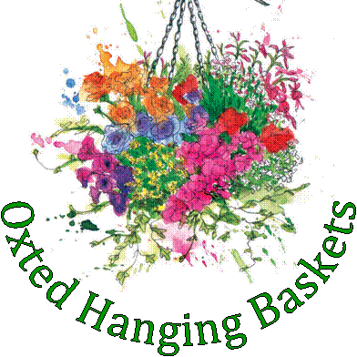 Oxted Hanging Baskets - provide beautiful hanging baskets for homes and businesses in the area. https://www.facebook.com/oxtedhangingbaskets