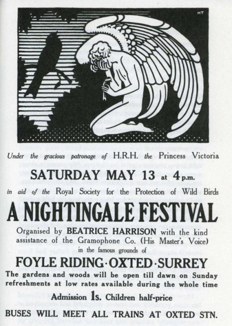 Original Nightingale Festival poster