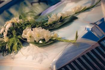 limuzine za svadbe