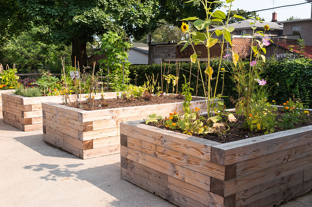 Lincoln Park Adds Community Garden