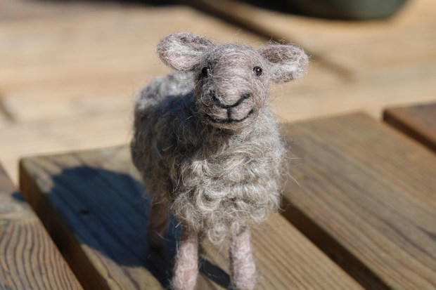 Shows how to sew eyes onto needle felted animals