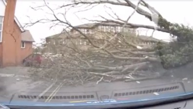 Paul Smith was yards away when the tree fell right in front of his car in Spalding