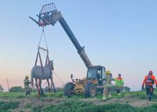 Fire crews winch Ziggy the horse to freedom