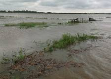 Defra will give £2m to farmers affected by this summer's flooding