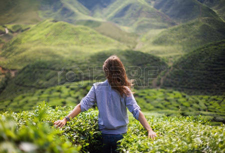 38231006-freedom-girl-in-mountains