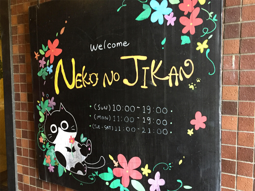 Neko No Jikan - Japan Cat Cafe Guide - Osaka