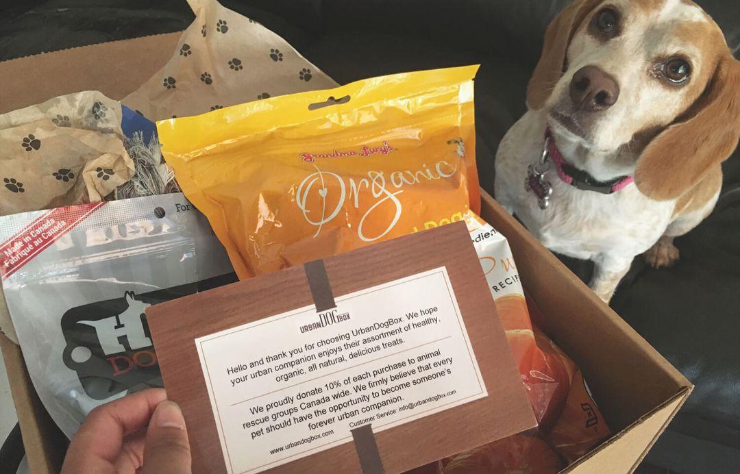 Urban Dog Box - Edmonton - Canada - Monthly Subscription Service