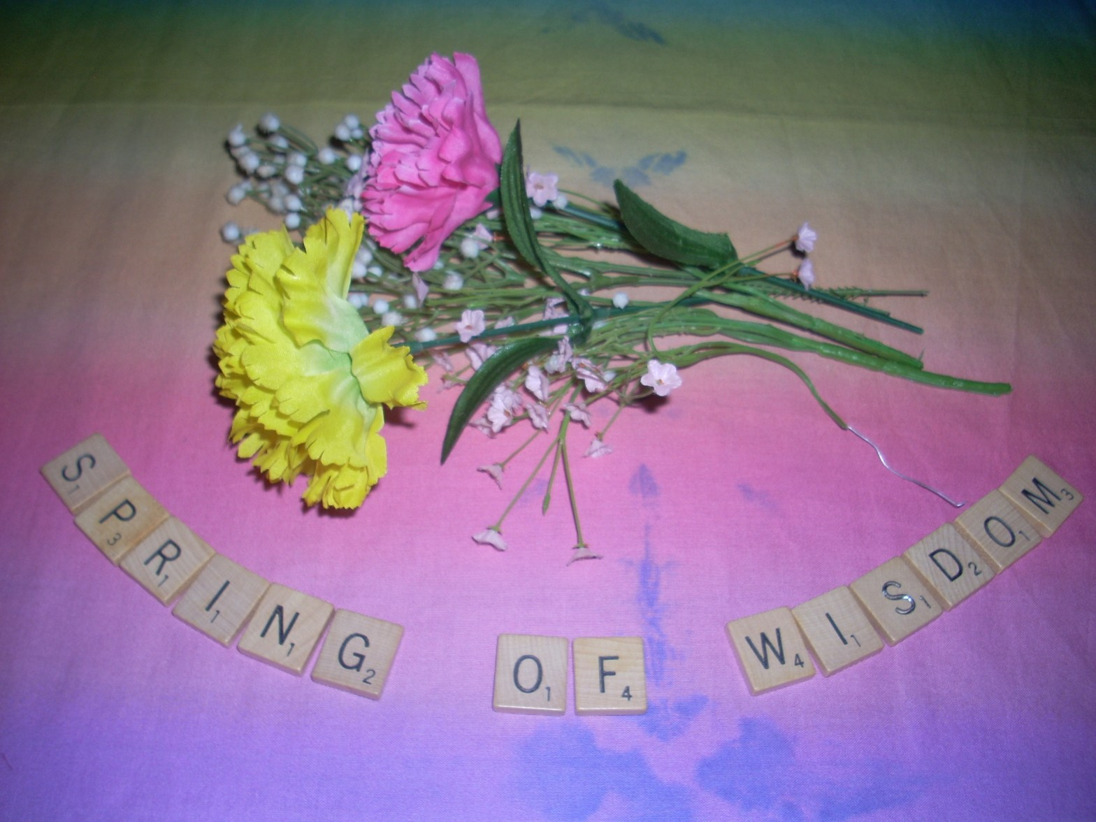 "picture of Scrabble Tiles spelling ""Spring of Wisdom"" with artificial flowers on colorful background"