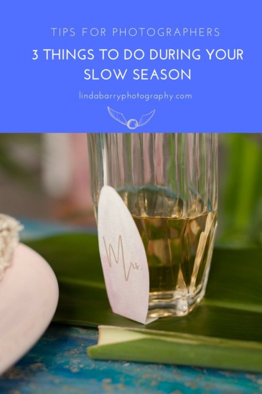 3 things to do during your slow season - tips for photographers! Click here to read more by Linda Barry Photography!