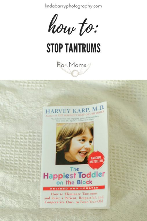 Happiest toddler on the block book review. Strategies to stop tantrums with your toddler!