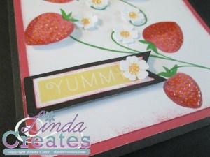 Taste of Summer Card 3d National Scrapbooking Month Linda Creates ~ Linda Caler www.lindacreates.com www.lindacreates.ctmh.com