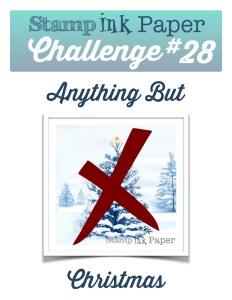 SIP-Challenge-28-No-Christmas-800