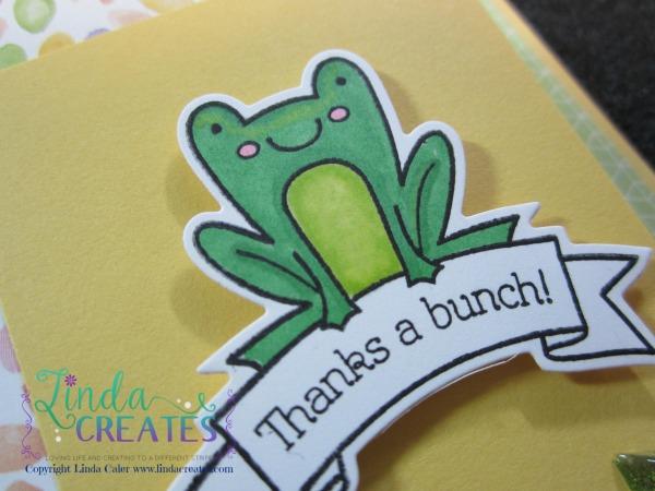 TAB Frog Card d wm