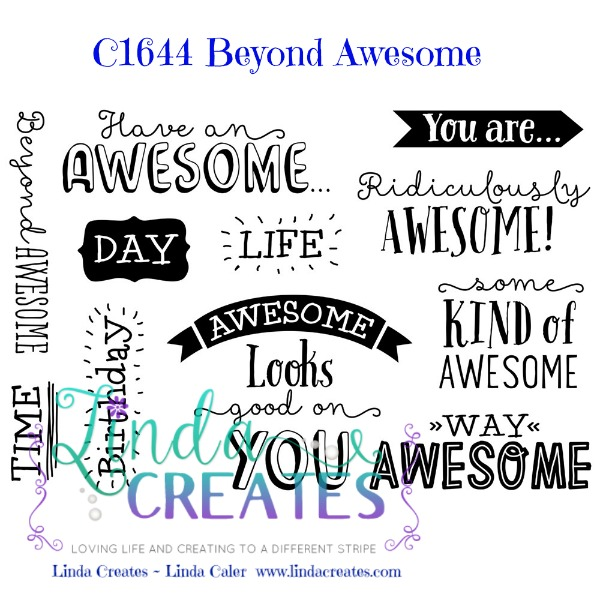c1644 Beyond Awesome wm