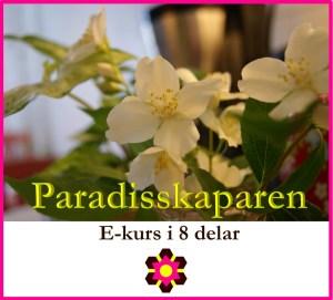 DNK Paradisskaparen