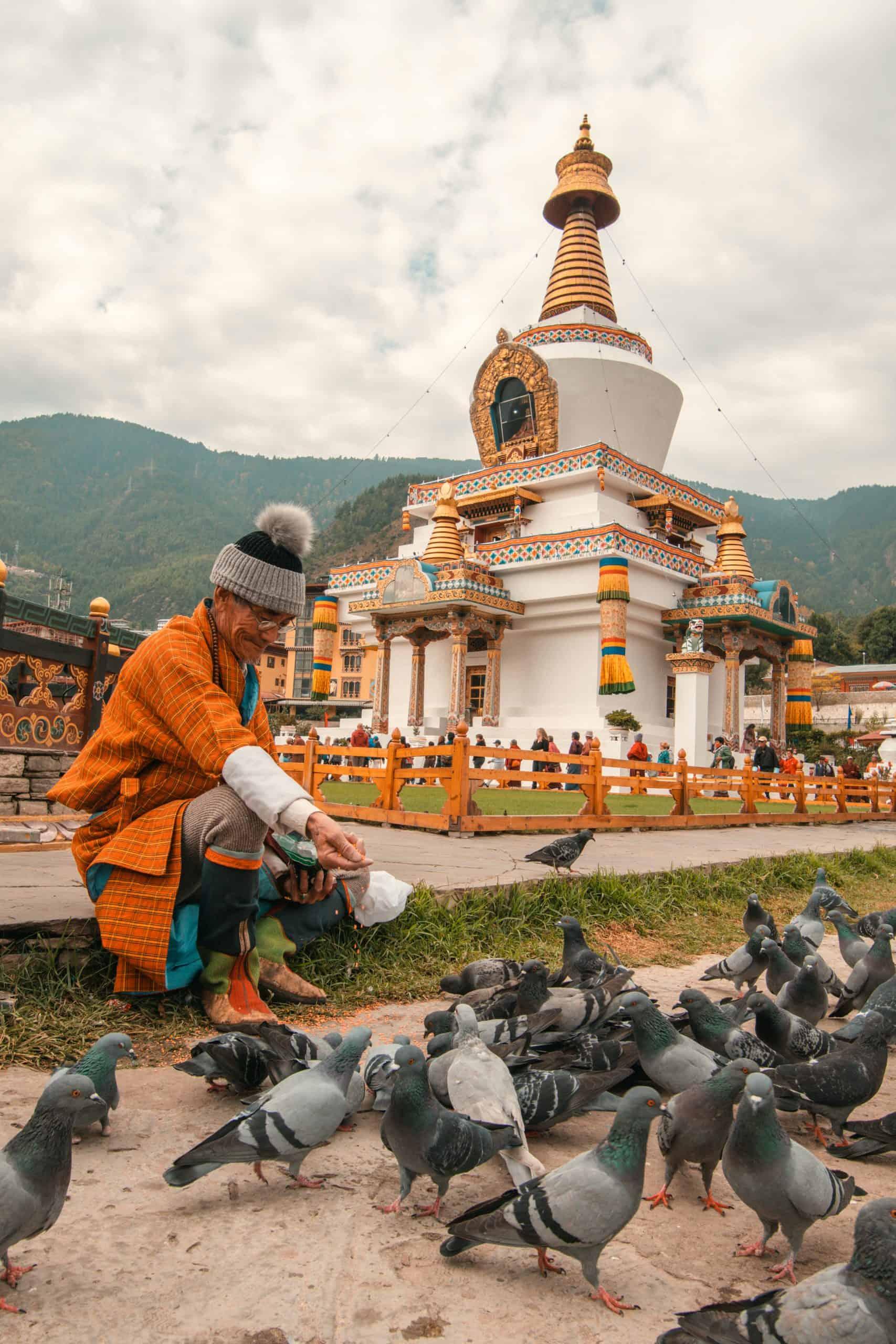 Pigeons at Memorial Chorten in Bhutan