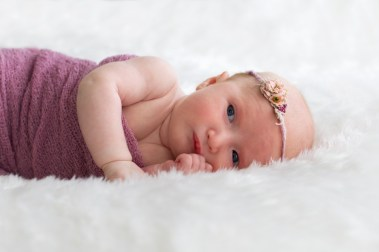 linda_hewell_photography_newborn004