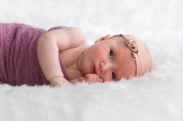 linda_hewell_photography_newborn004